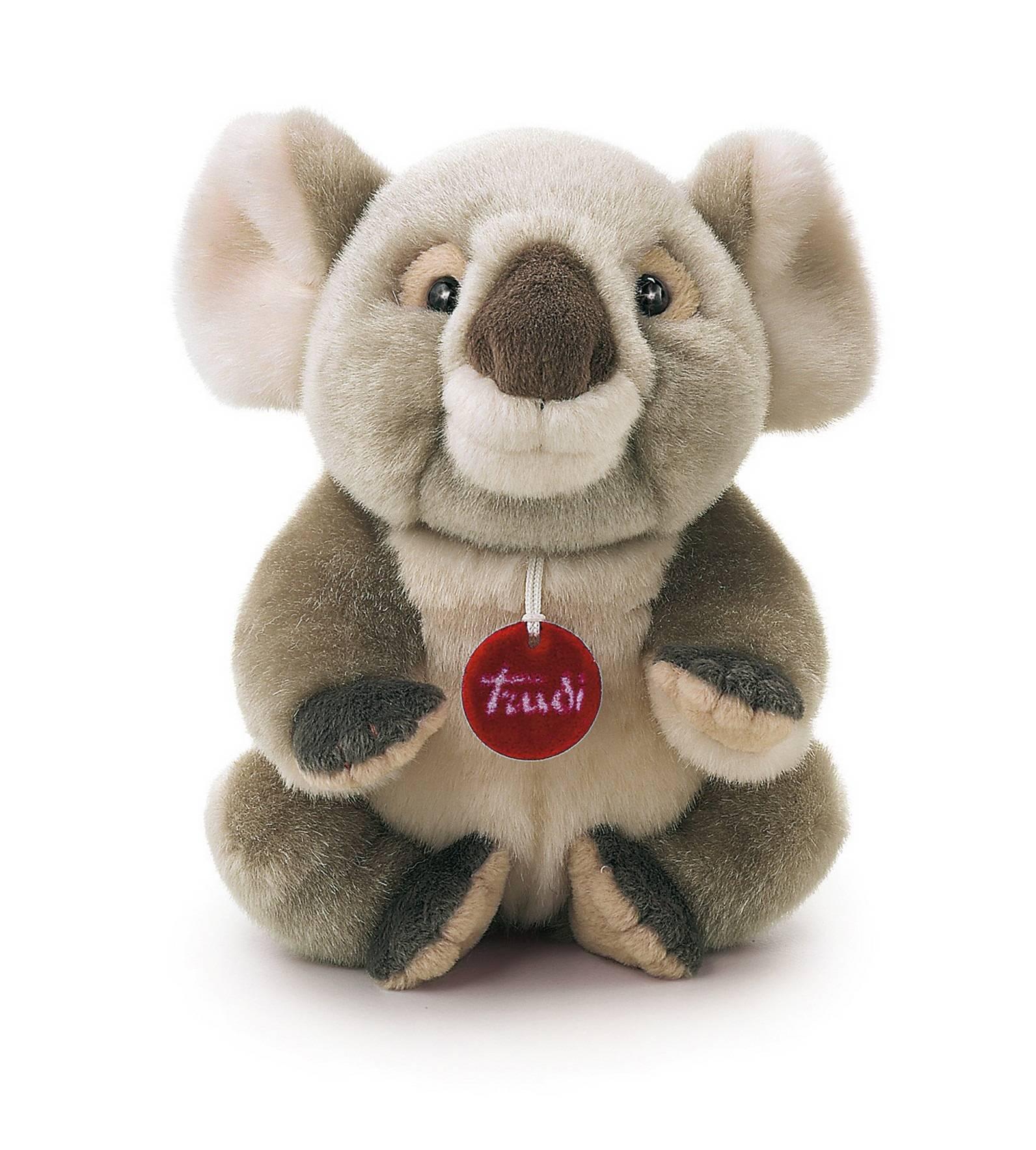 коала купить в москве отсутствие